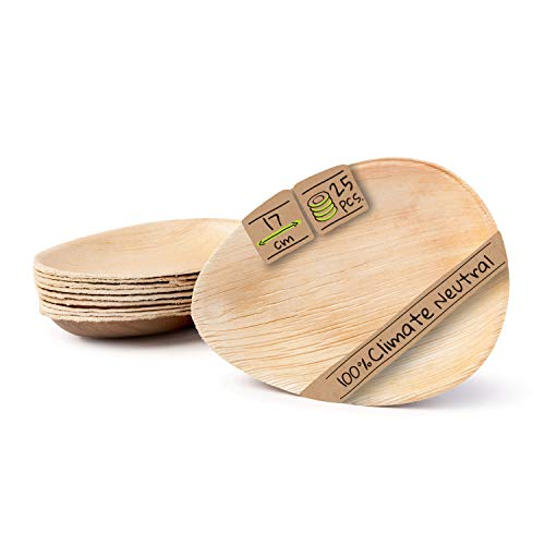 Top 10 Bambus Teller Mehrweg – Einwegteller