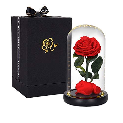 Top 10 Schöne und das Biest Rose – Seiden- & Kunstblumen