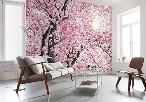 Top 10 Fototapete Kirschblüte – Wandtattoos & -bilder