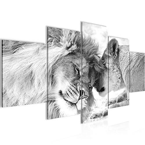 Top 10 Löwen Leinwand Schwarz Weiß – Poster & Kunstdrucke