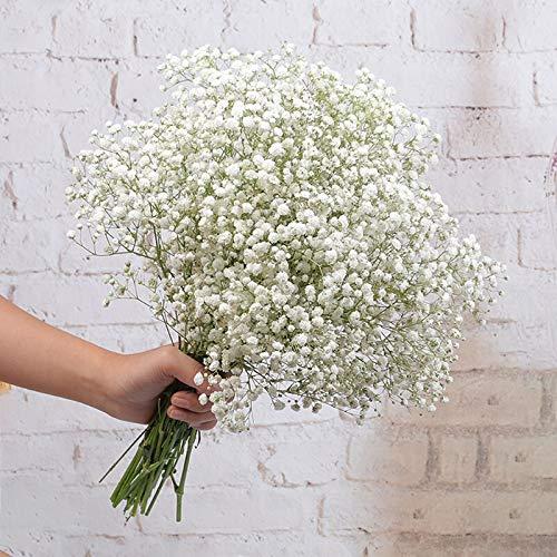 Top 10 Schleierkraut Künstlich Weiß – Künstliche Pflanzen